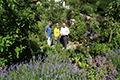 Tag der offenen Gartentür zeigt drei Gärten in Herrsching