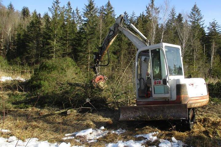 Renaturierung Ettenhofer Moor