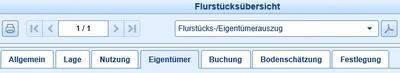 ALKIS_Fenster zur Flurstücksübersicht mit den Buchdaten zum Flurstück