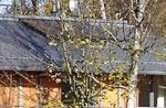 Solarthermische Anlage in Krailling - Rosenstr. 8